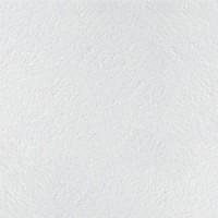 Плита Retail Armstrong 600x600x12мм